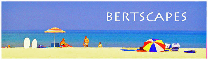 bertscapes header